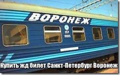 Купить билеты на поезд санкт петербург воронеж возьму автомобиль в аренду объявления