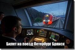 Билет на поезд Петербург Брянск