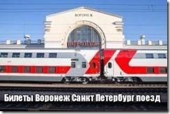 Билеты Воронеж Санкт Петербург поезд