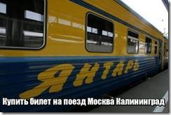Купить билет на поезд Москва Калининград