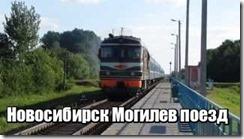 Новосибирск Могилев поезд