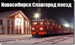 Новосибирск Славгород поезд