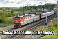 Поезд Новосибирск Белгород