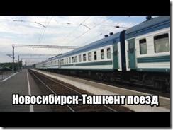 Новосибирск-Ташкент поезд