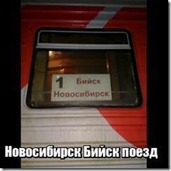 Новосибирск Бийск поезд